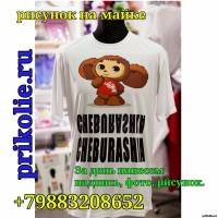 Купить футболку с Чебурашкой другу на День Рождения